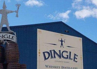 Dingle Experience